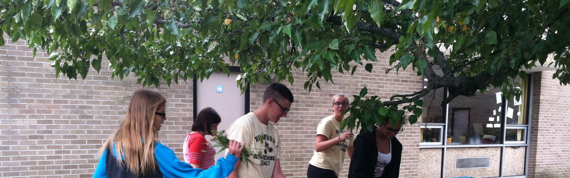 Leo Club cleans up the courtyard at high school
