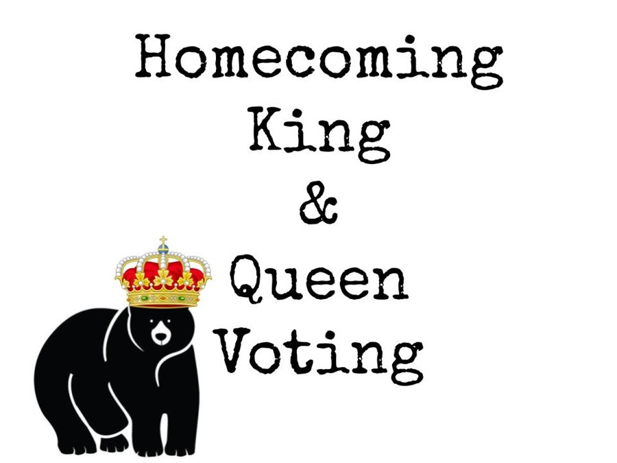 King and Queen Voting